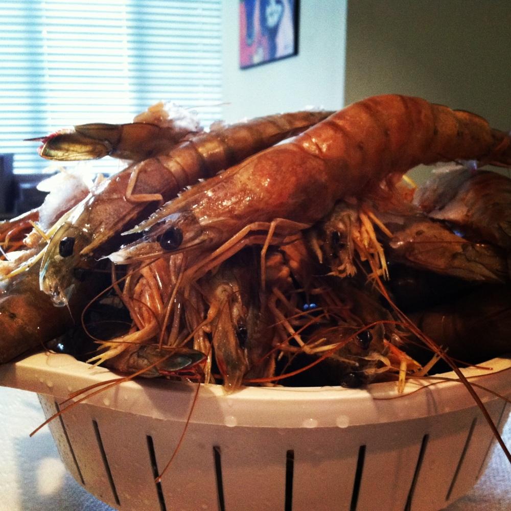 shrimp skillet 023